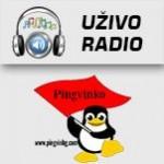 Radio Pingvinko Beograd