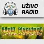 Electronic Penguin - Radio Pingvinko