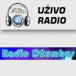 Radio Džumbus