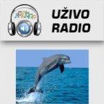 Delfin Radio Prokuplje