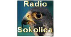 Radio Sokolica Kragujevac
