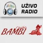 Radio Bambi Zvornik