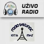 Radio Svilajnac