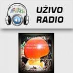 Radio Rujnica Zavidovići
