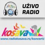 Radio Košava Koncert 1 Beograd