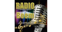 Radio Boem Negotin